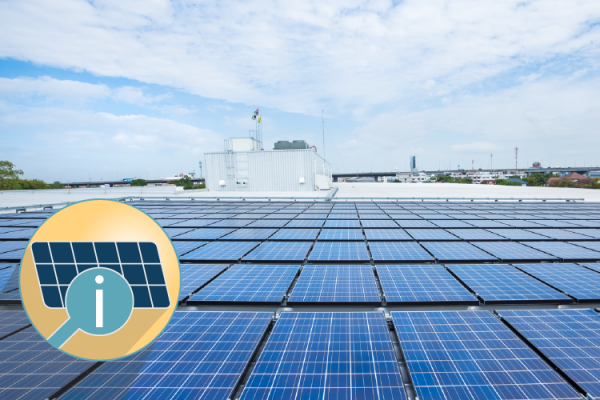 Environmental Reasons Your Business Should Invest in Solar
